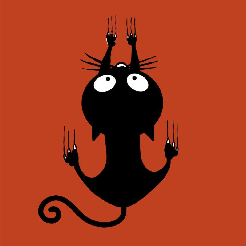 Climbing Cat Halloween T-Shirt Motiv mit Katze